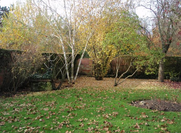 entretien jardin viroflay